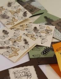 paljon_perhosia